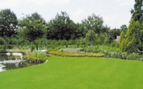 gras bols forstplanteskole. Black Bedroom Furniture Sets. Home Design Ideas